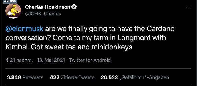 screenshot Hoskinson twitter 13.5.21